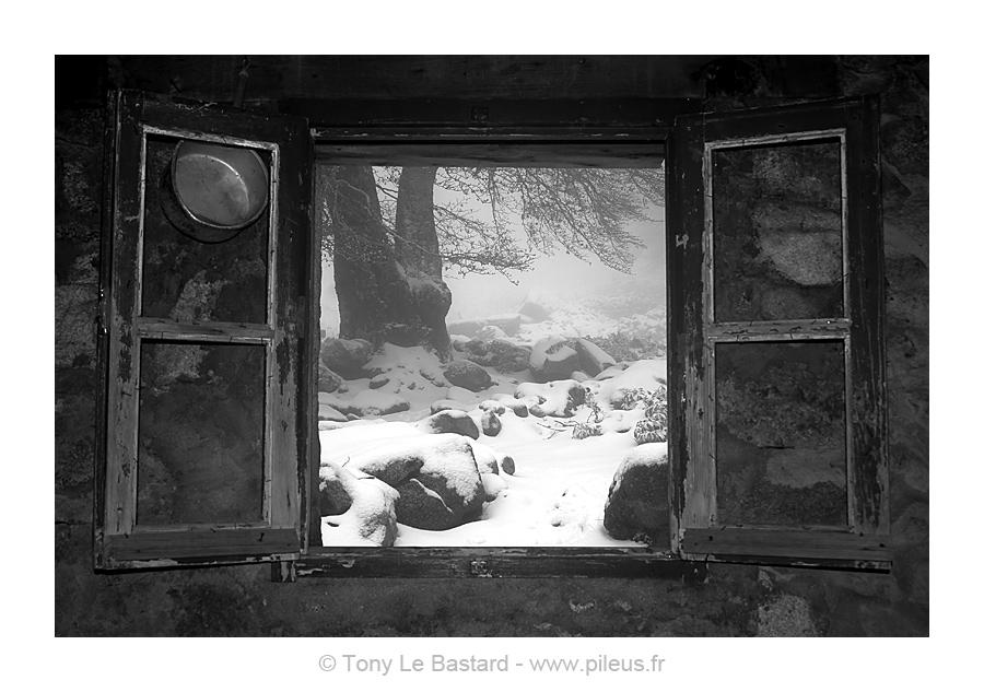 Pileus photographies de tony le bastard for Fenetre ouverte sur paysage